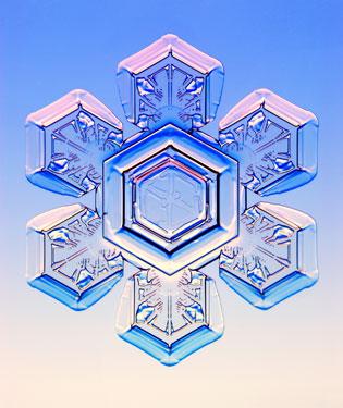 Stellar-plate snowflake